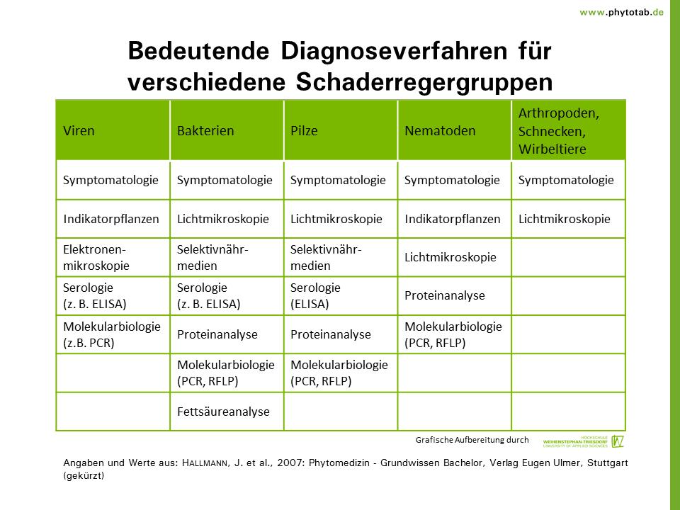 Phytotab  Diagnostik U0026 39