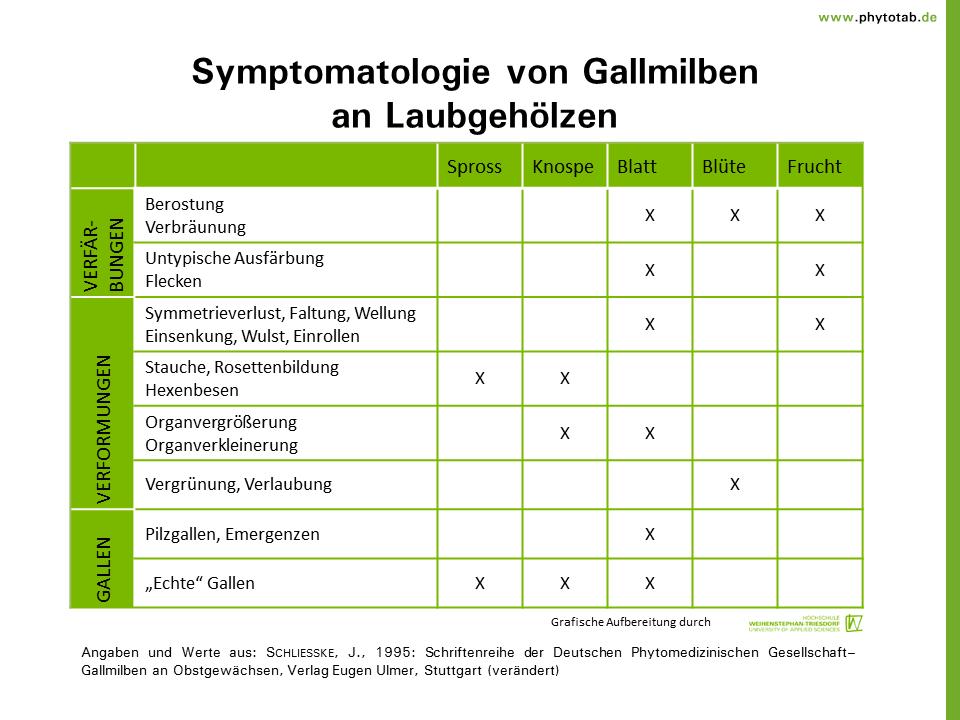 phytotab tabellen der kategorie 39 spinnentiere tausendf ler 39