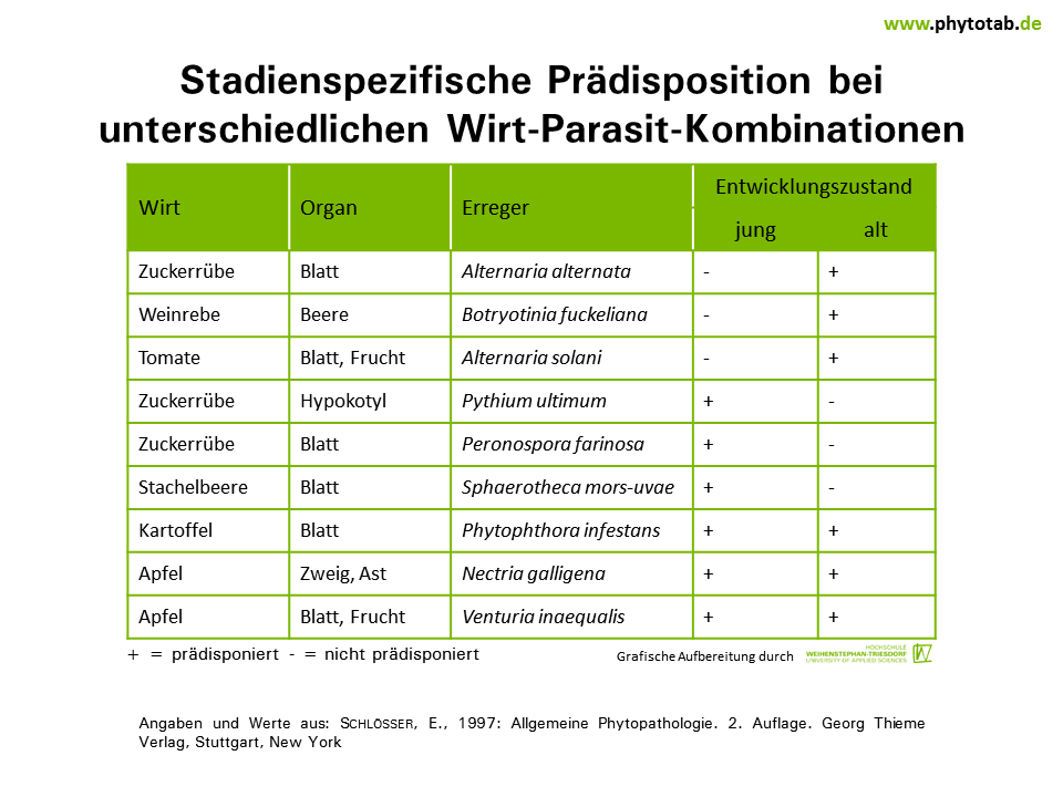 PhytoTab - Tabellen der Kategorie \'Wirt-Parasit-Beziehungen\'