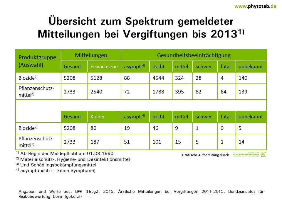 Großartig Tabelle Der Risikobeurteilungstabelle Zeitgenössisch ...